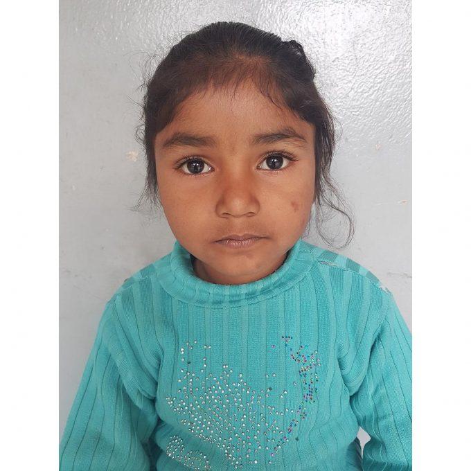 Nisha Majeed